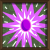 02586_017.png